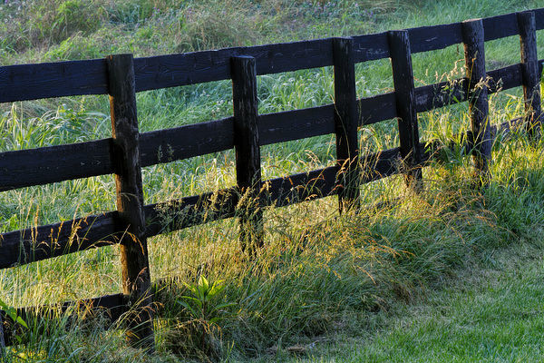 Farm fence at sunrise, Oldham County, Kentucky