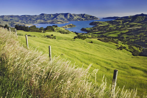New Zealand, South Island. Akaroa Harbor landscape. Credit as: Dennis Flaherty / Jaynes Gallery / DanitaDelimont