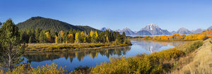 67545-08810 Oxbow Bend in fall, Grand Teton National Park, WY