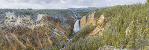 67545-09106 Lower Falls in fall, Yellowstone National Park, WY