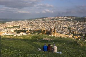 Africa, Morocco, Fes. Overview of the city from the Tombs de Merenidi