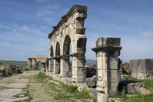 Africa, Morocco, Volubilis. Archeological site of ancient Roman ruins