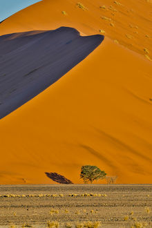 Africa, Namibia, Sossusvlei. Dune in the afternoon