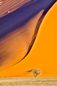 Africa, Namibia, Sossusvlei Dune in the Afternoon Light