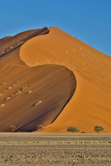 Africa, Namibia, Sossusvlei. Dunes in the afternoon