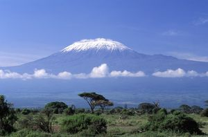 Africa, Tanzania. Mount Kilimanjaro, African landscape and zebra