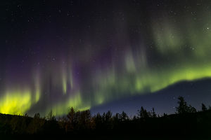 Alaska. Aurora borealis and stars. Credit as: Don Paulson / Jaynes Gallery /