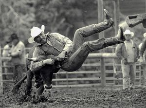 All Indian Rodeo in Tygh Valley, Oregon. Clint Bruisehead of Warm Springs tribe bulldogs