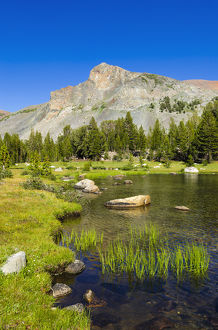 Alpine tarn in Dana Meadows under Mount Dana, Tuolumne Meadows, Yosemite National Park