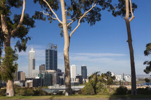 Australia, Western Australia, Perth, city skyline from Kings Park, late afternoon