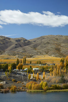 Autumn colours, Bannockburn Inlet, Lake Dunstan, Central Otago, South Island, New Zealand