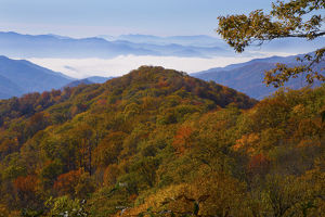 Autumn in the Great Smoky Mountain National Park, Tennessee
