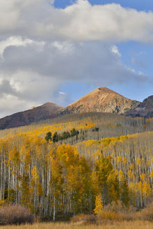 Autumn Keebler Pass, Colorado, last evening light on mountain range and aspens in