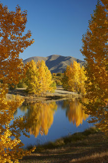 Autumn reflections in Kellands Pond, near Twizel, Mackenzie District, South Canterbury