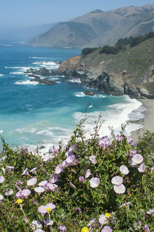 Along the Big Sur Coastline, California