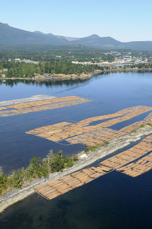 Canada, British Columbia, Log booms stored in the Shoal Islands, Chemainus River Estuary