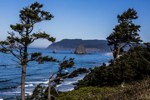 Cannon Beach, Oregon. Weathered Pines, Haystack Mountains, and the Pacific Ocean Coast