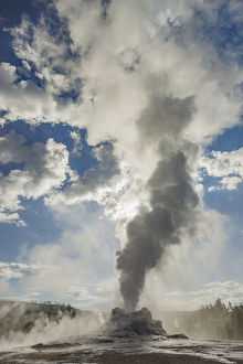 Castle Geyser erupting, Upper Geyser Basin, Yellowstone National Park, Wyoming/Montana