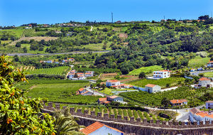 Castle Wals Countryside Farmland Medieval Town Obidos Portugal