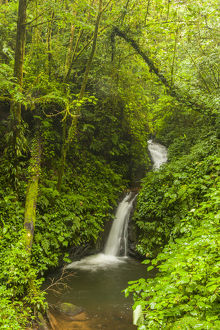 Central America, Costa Rica. Monteverde waterfall