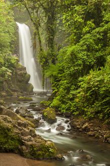 Central America, Costa Rica. Templo waterfall in rain forest