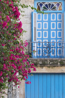 Cuba, Havana. Bougainvillea blooms near a balcony in the restored area of Old Town