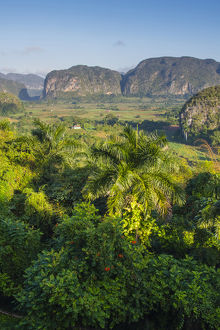 Cuba. Pinar del Rio. Vinales. The Vinales valley in the early morning