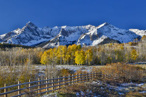 Dallas Mountain and San Juan Mountain Range, Colorado, Autumn colors and aspens glowing