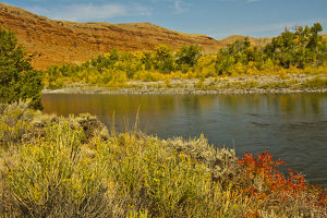 early autumn, Wind River, Wind River Reservation, Wyoming, USA