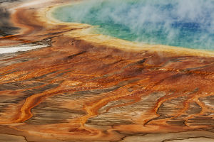 Elevated view of bacterial mat, Grand Prismatic Spring, Midway Geyser Basin, Yellowstone