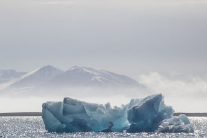 Europe, Norway, Svalbard. Backlit blue glacial ice