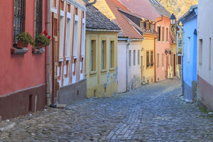 Europe, Romania, Sighisoara,cobblestone residential street of colorful houses in village