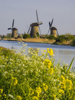 Europe;Netherleands;Kinderdyk;Windmills with evening light along the canals of Kinderdijk