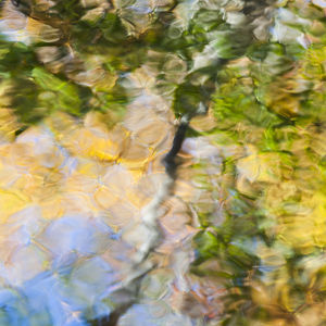 Fall colors reflect in the rippled waters of a pond, looking like a painting