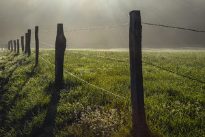 Fence in Cades Cove at sunrise, Great Smoky Mountains National Park, Tennessee