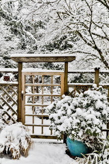 places/fence gate covered snow