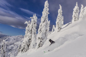 First Tracks on Evans Heaven on sunny powder morning at Whitefish Mountain Resort