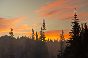 Foggy Sunrise; Reflection Lakes Area; Mount Rainier National Park; Washington; USA