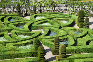 europe/france/garden detail chateau villandry villandry loire