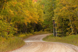Gravel road through Hiawatha National Forest, Upper Peninsula of Michigan