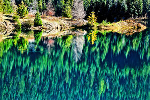 europe/italy/green trees gold lake reflection snoqualme pass