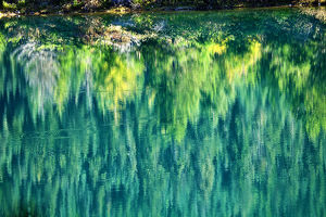 europe/italy/green yellow trees fall reflection abstract gold