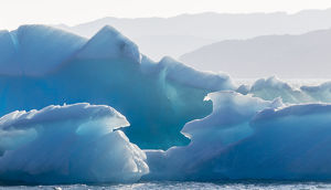 greenland/icebergs drifting fjords southern greenland america