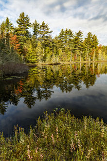 Irwin Lake and bog, Hiawatha National Forest, Upper Peninsula of Michigan