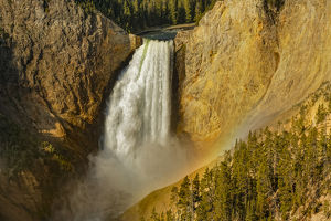 Lower Yellowstone Falls, Yellowstone National Park, Wyoming/Montana