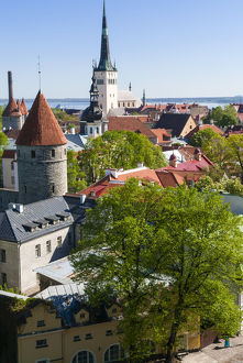 Medieval town walls and spire of St. Olav's church, view of Tallinn from Toompea hill