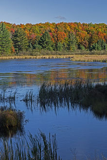 Michigan, Hiawatha National Forest, Doe Lake