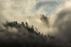 Misty Cloud filled valley from Morton Overlook, Great Smoky Mountains, National Park