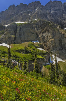 Morning Eagle Falls and summer wildflowers along Mount Gould in Glacier National Park