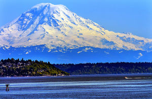 Mount Rainier Puget Sound North Seattle Snow Mountain Channel Marker Washington State